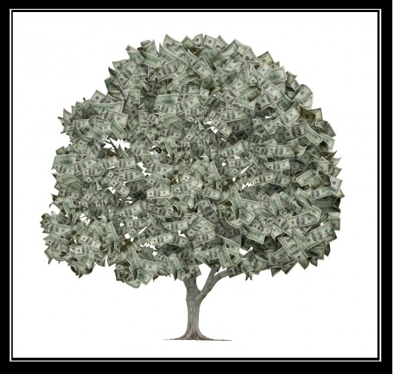 what if money tree